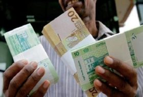 sudan soft currency system
